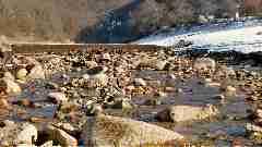 Camping La Romiguiere : P1170359